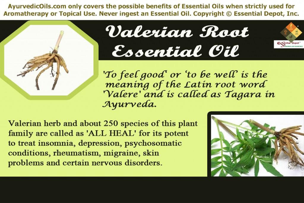 Valerian root--banner