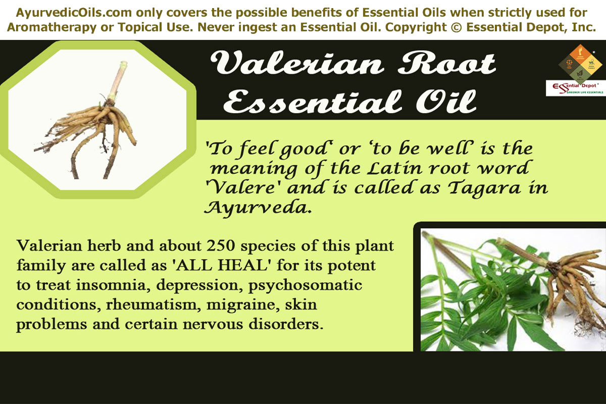 Essential Depot backs up its quality claims about the Essential Oils we sell. We believe we are the only company selling Essential Oils that does Gas Chromatograph (GC) and Mass Spectrometry (MS) testing on every batch received and publishes the full GC report with extensive research on each Essential Oil for redlightsocial.ml Members/5(26).