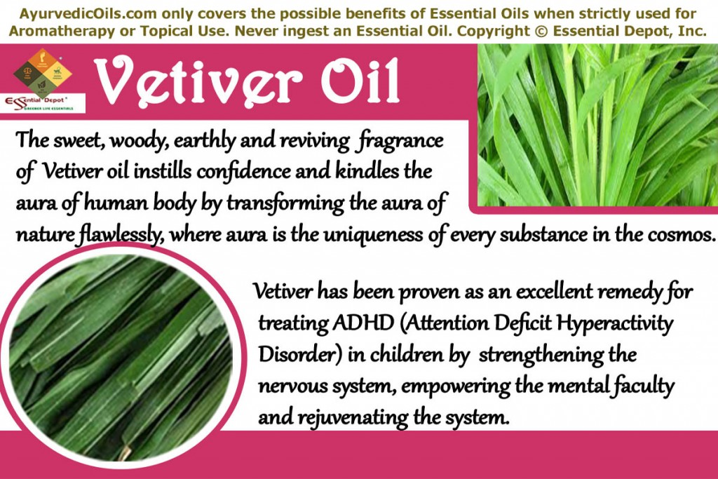 Vetiver-oil-banner