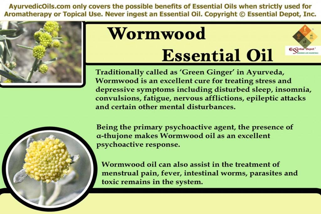 wormwood-banner