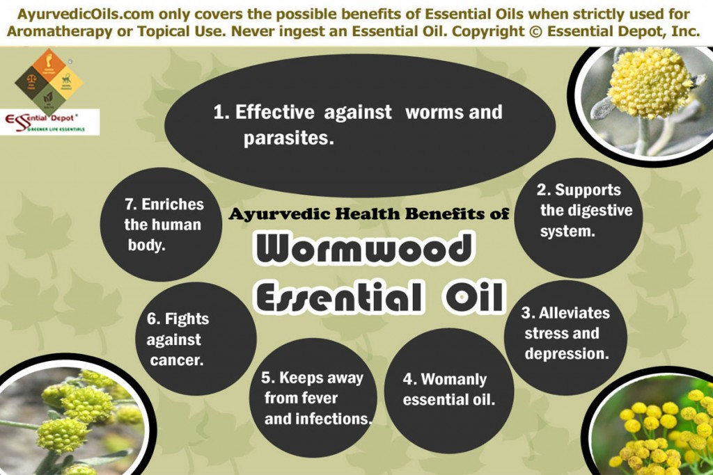Wormwood Essential Oil | Essential Oil