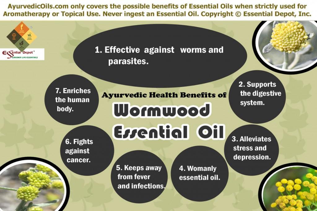 wormwood-broucher
