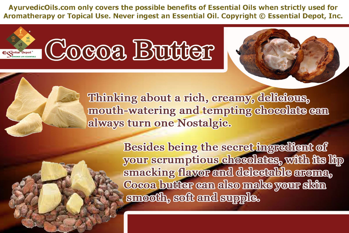 The Benefits of Cocoa Butter for Your Skin