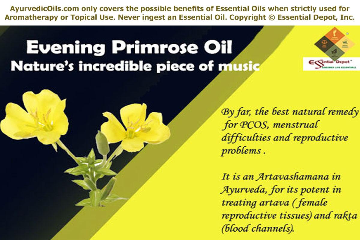 evening primrose oil essential oil