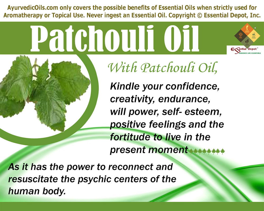 Patchouli. Essential oil: properties and application