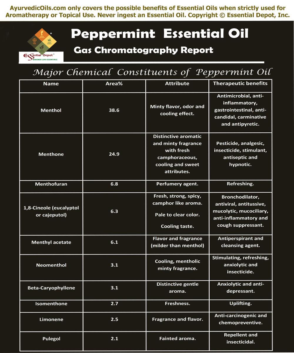 Mentha piperita | Essential Oil