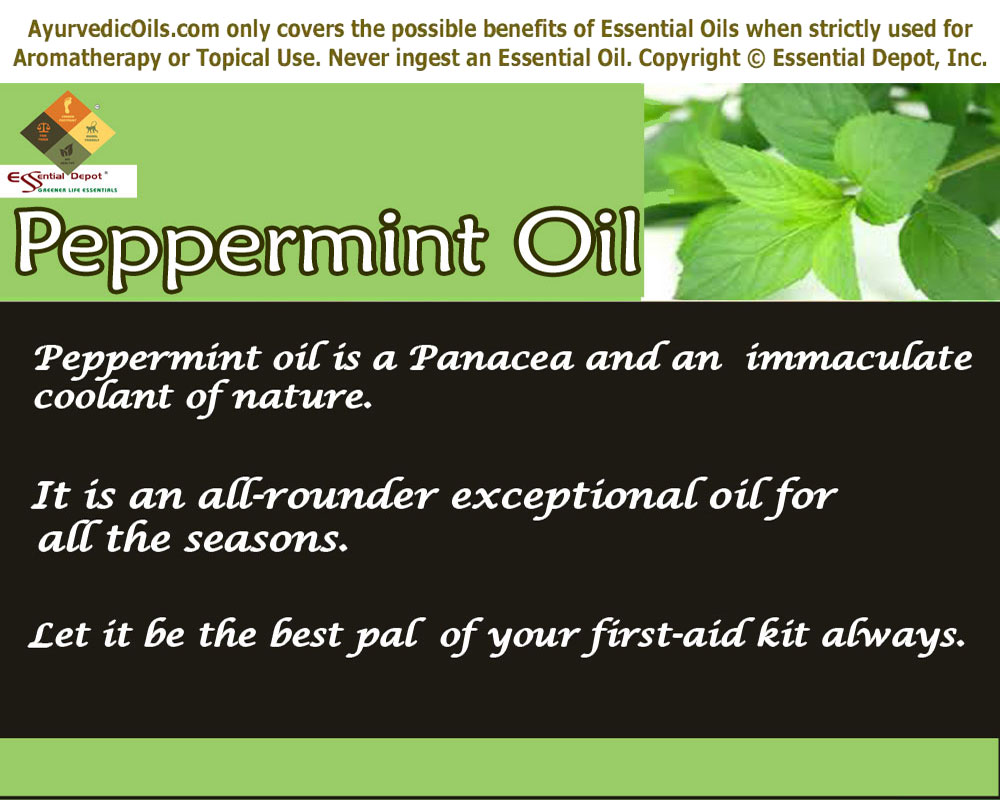 Mentha piperita | Essential Oil