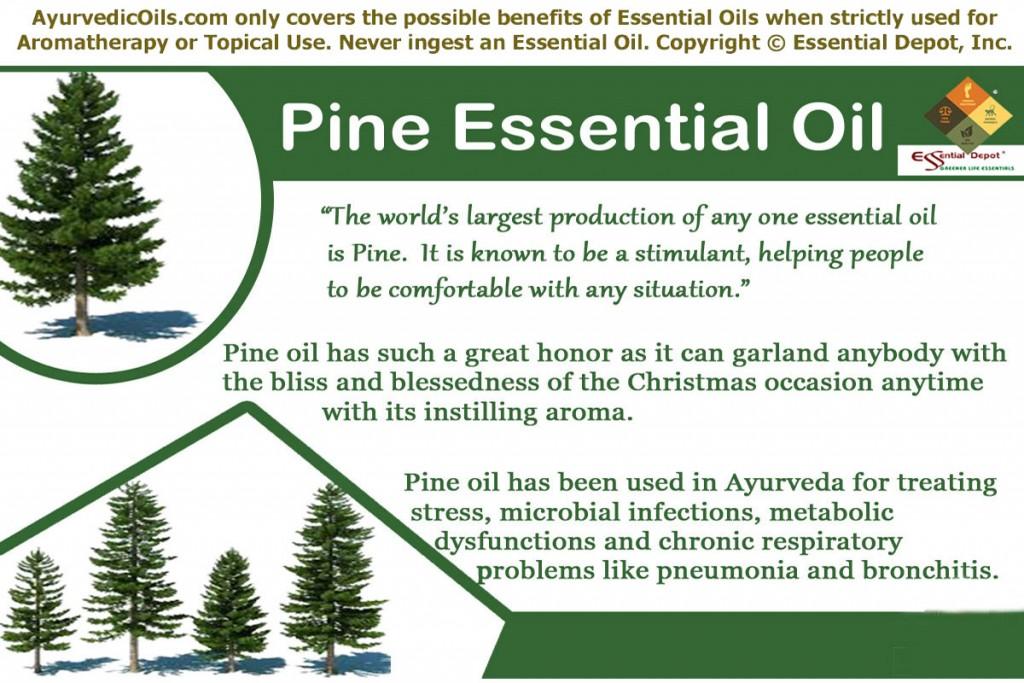 Pine-banner