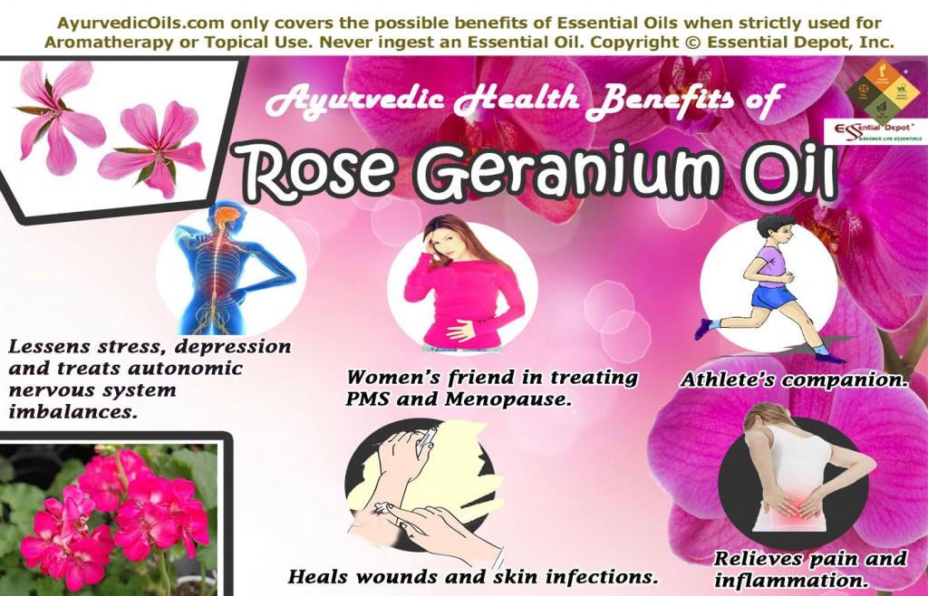 rose-geranium-broucher