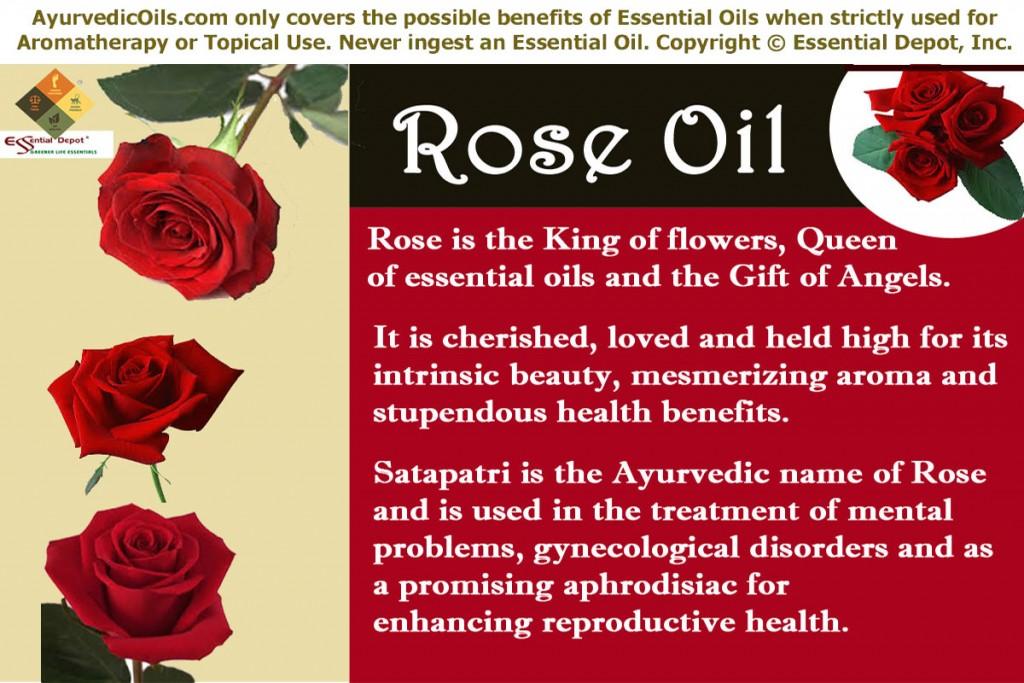 Rose-oil-banner