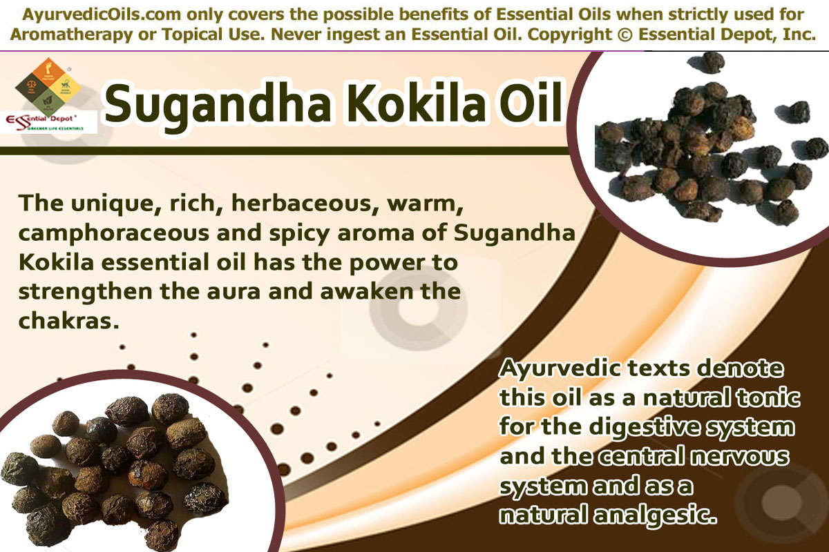 oils for the digestive system   Essential Oil