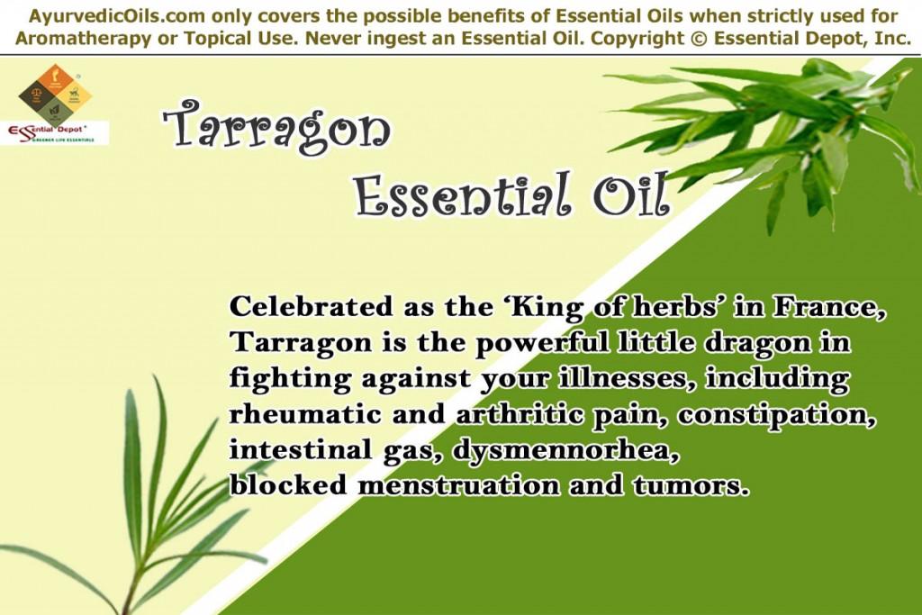 Tarragon-banner