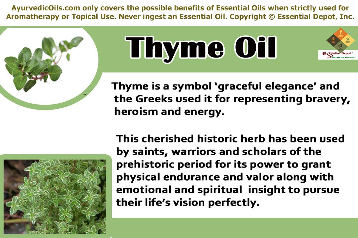 Thyme Essential Oil Essential Oil