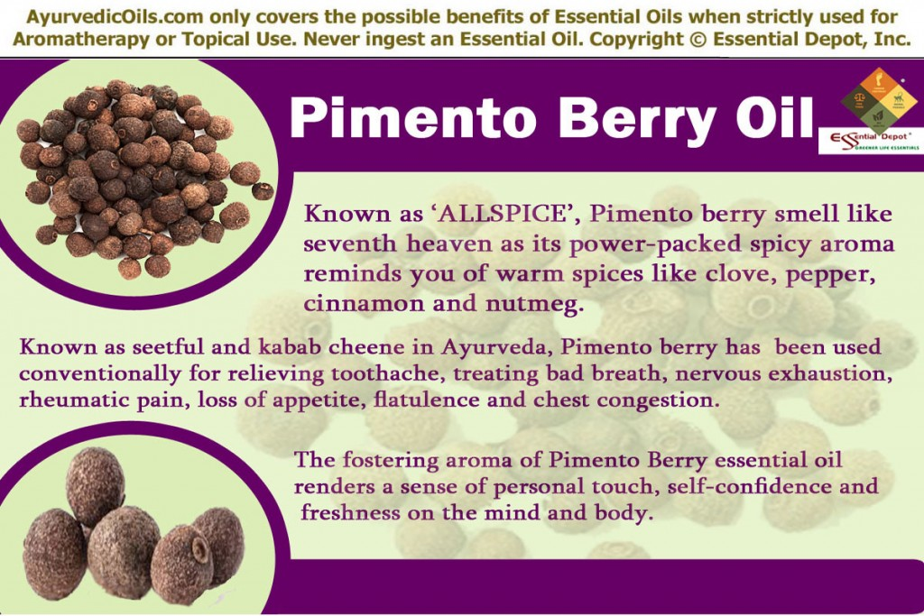 pimento-berry-banner